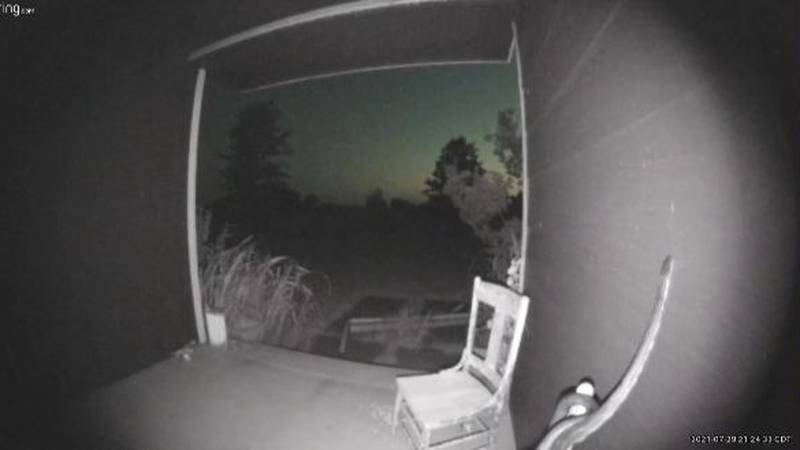 Snake caught on doorbell camera