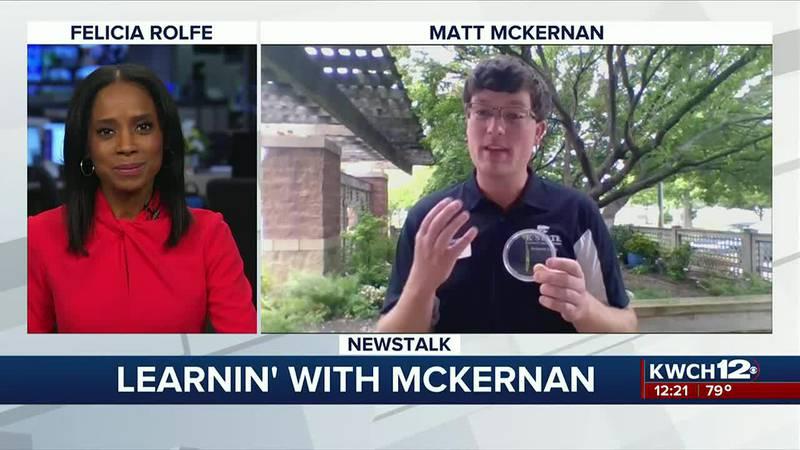 Learnin' with McKernan: Armyworms