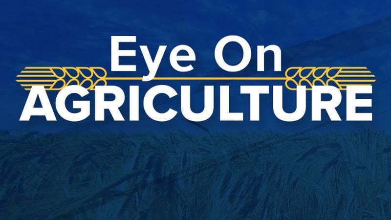 KWCH Eye on Agriculture