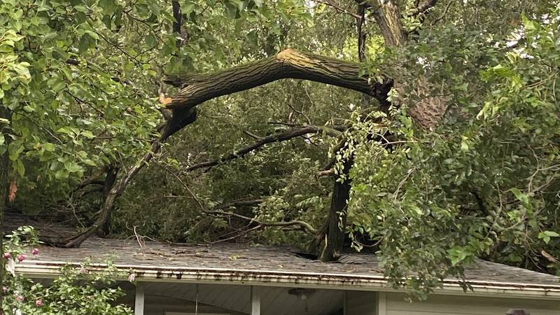 Residents of Augusta are cleaning up after a microburst struck the town early Wednesday.