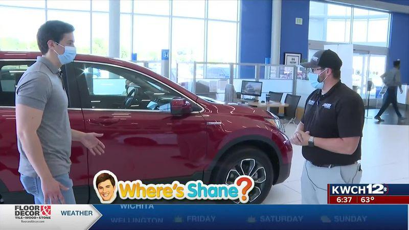 Where's Shane? Scholfield Honda