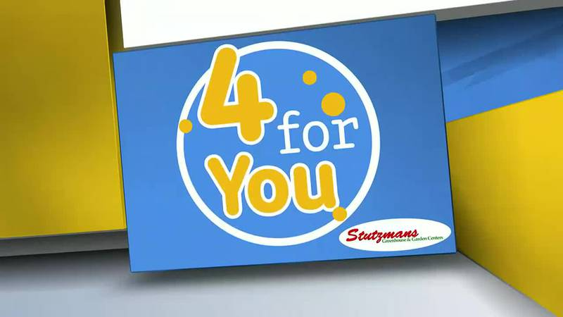 4 for You