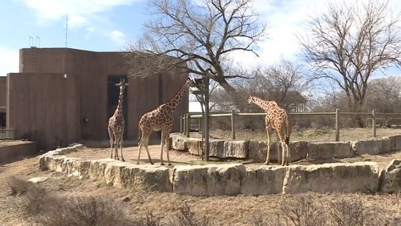 (Sedgwick County Zoo)