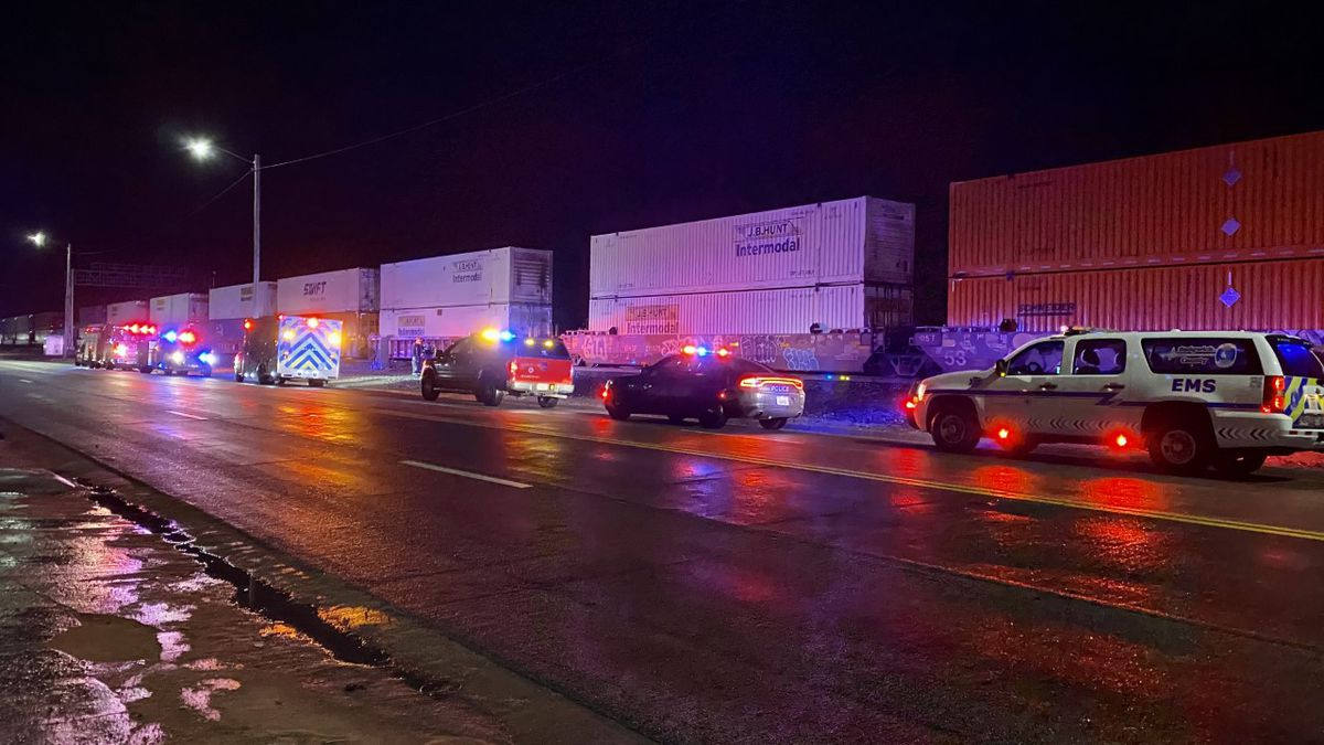A pedestrian was critically injured after being struck by a train Wednesday night (March 24) in...